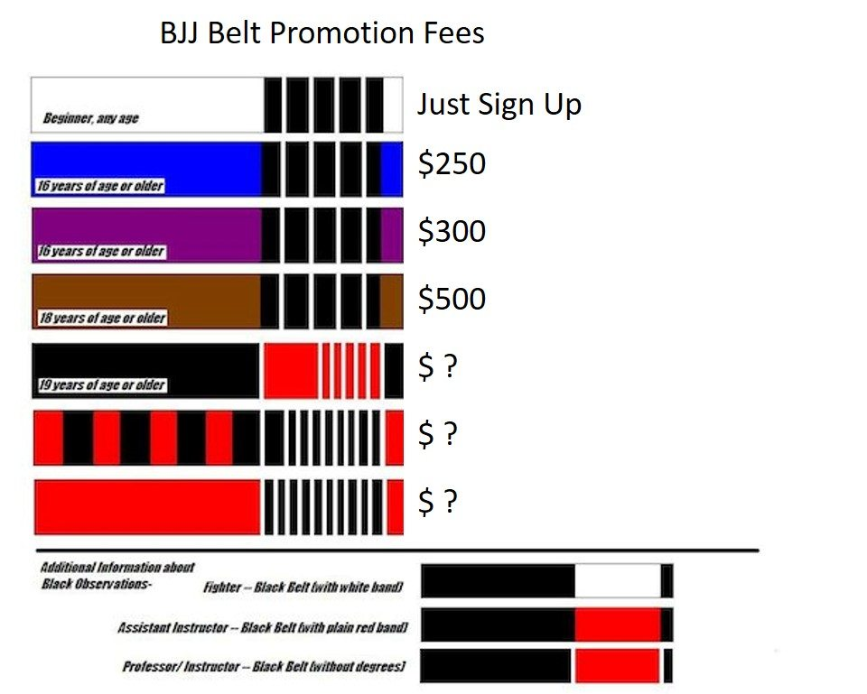 What Is The Price Of A BJJ Belt Promotion?